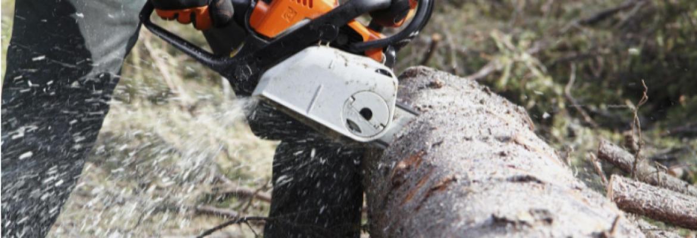 Como cortar árvore com motosserra